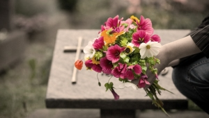 flowers-copy